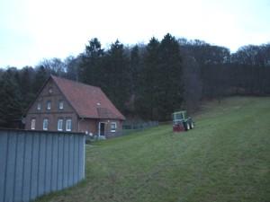 Vorbereitungen zum Fällen der Fichtenreihe. Höhe der Bäume ca. 25m. Sie standen instabil und waren eine Gefahr für das nahstehende Haus.