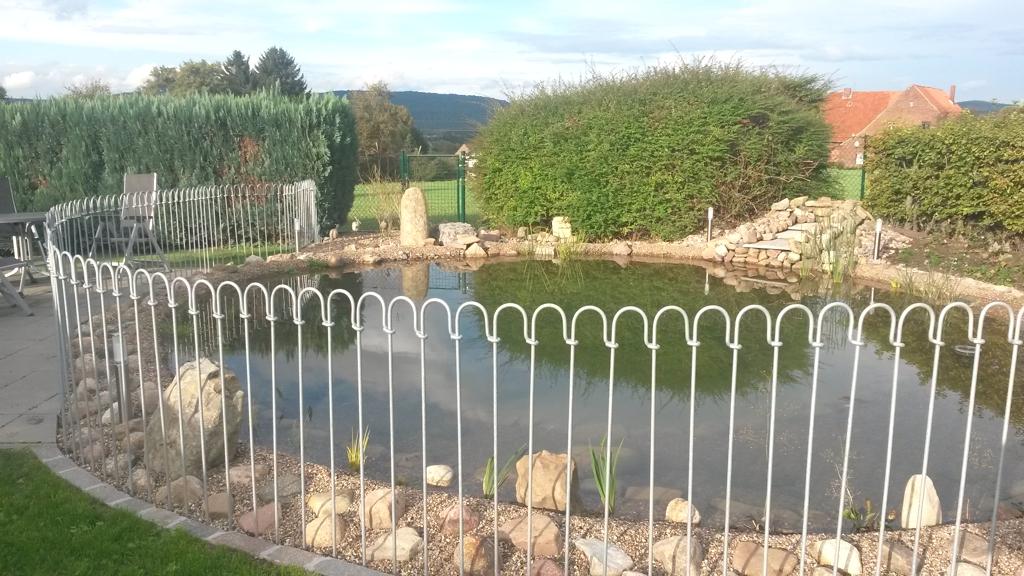 Teichbau Neugestaltung und Sanierung.