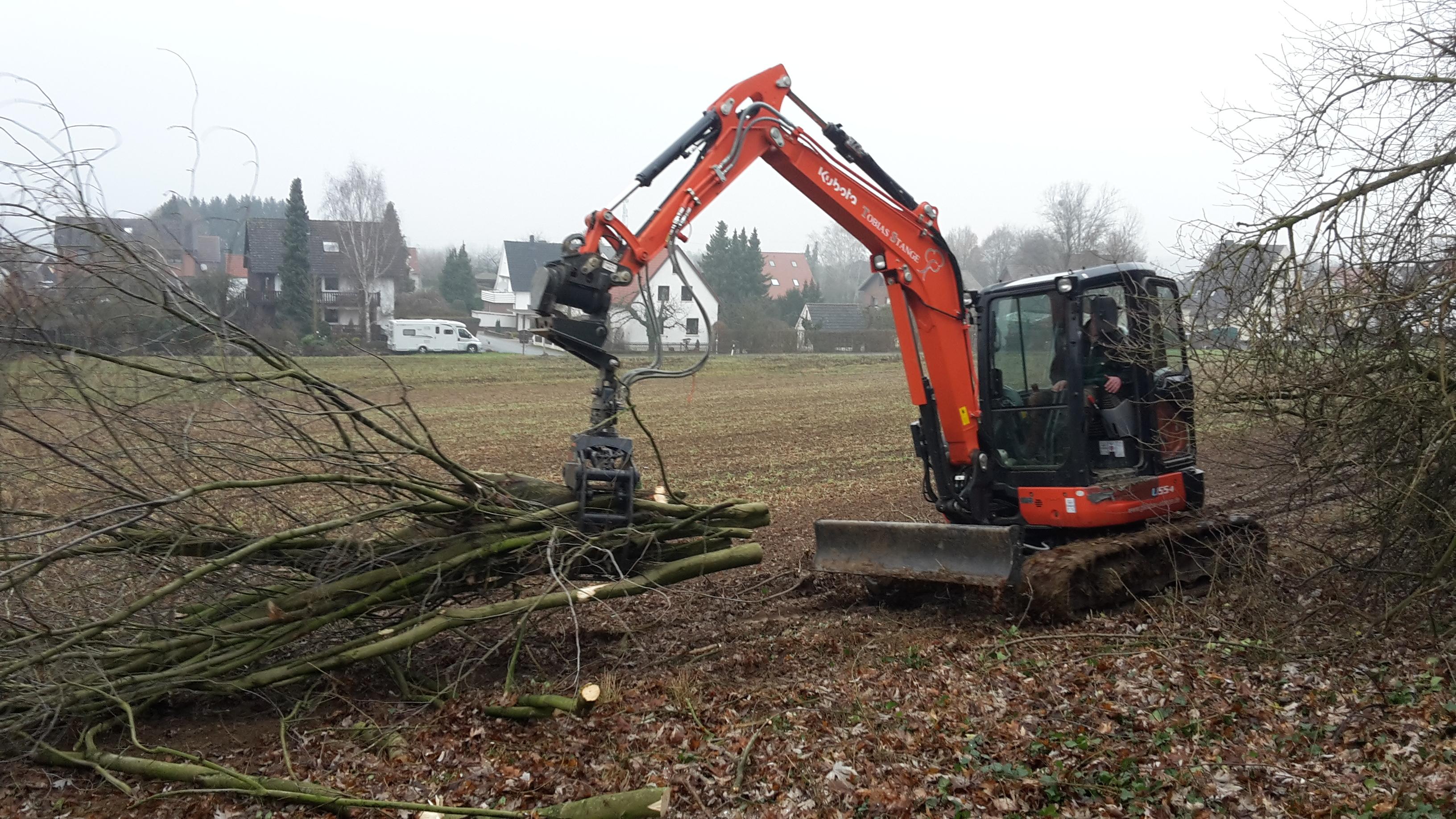 Das Arbeitstier im Einsatz nach einer Baumfällung